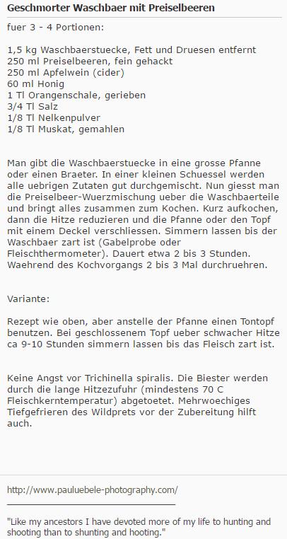 Rezept: Waschbär mit Preiselbeeren (Screenshot Wild und Hund Forum)